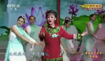张敏:黄梅戏《徽州女人》选段