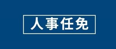 王屑被任命为太湖县人民政府副县长、县公安局局长