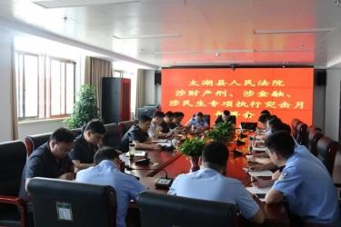 太湖法院涉财产刑、涉金融、涉民生专项执行行动正式启动